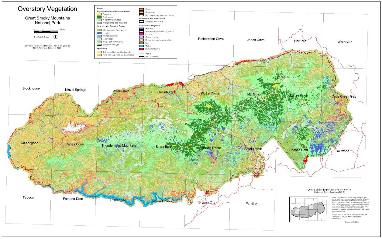 great smoky mountains national park vegetation mapping project. great smoky mountains